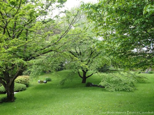 Jardins Albert Kahn.14