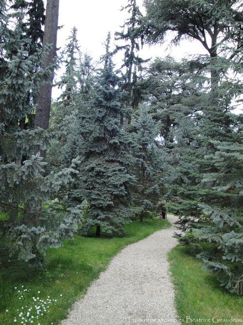 Jardins Albert Kahn.19