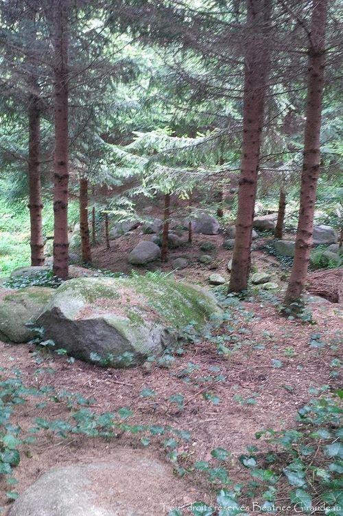 Jardins Albert Kahn.copie.3